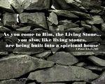 Week 2 - Living Stones